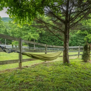The Roundette features a hammock - The Cove at Fairview Vacation Rentals - Asheville NC