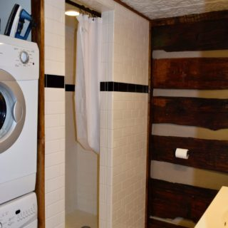 Garden Cabin shower - The Cove at Fairview - Vacation Rentals - Asheville, NC